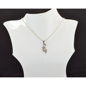 Necklace Pendant Brushed steel Shiny 61101
